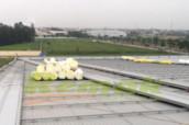 Cách âm chống ồn cho mái tôn