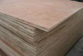 Gỗ dán plywood 1